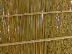 סכך קני סוף 1.1X3.1 מטר סוכות נחלים