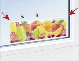 """4 י""""ח מדבקה לחלון ללכידת חרקים מעופפים"""