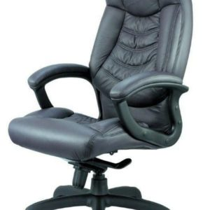 כסא דגם דני