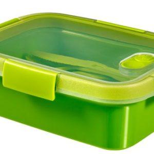 קופסת טו גו 1000 מלבנית- ירוק